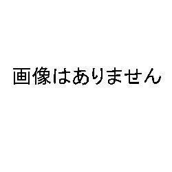 画像1: 前田工繊 ボルトメイトエポEP-1500J用ミキシングノズル10本セット(EP-1500J-M)